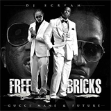 Free Bricks (With Future)